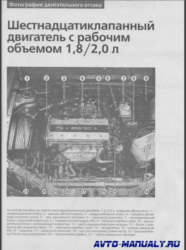 Руководство По Ремонту Opel Vectra B Опель Вектра Скачать